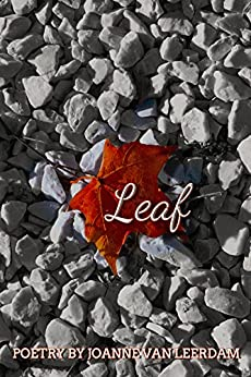 Leaf by [Joanne Van Leerdam]