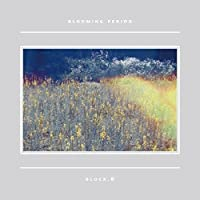 5thミニアルバム - Blooming Period (韓国盤)