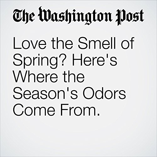 Love the Smell of Spring? Here's Where the Season's Odors Come From. copertina