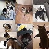 MEKO - Costume da gatto nero ali di pipistrello Cosplay – Costumi per animali da compagnia vestiti per gatti piccoli cani cuccioli per gatti