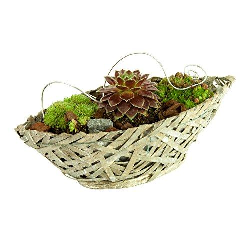 Pajubo - Vaso per piante, motivo: nave, lunghezza 30 cm, colore: bianco