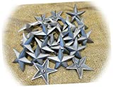 NewSSign Lot of 15 Star Nails Craft Pins 3 1/2' inch Rustic Cast Iron Ative Wall Texas Clavos #GR-0366CFTS Wall Vintage Antique Home Garden Decor
