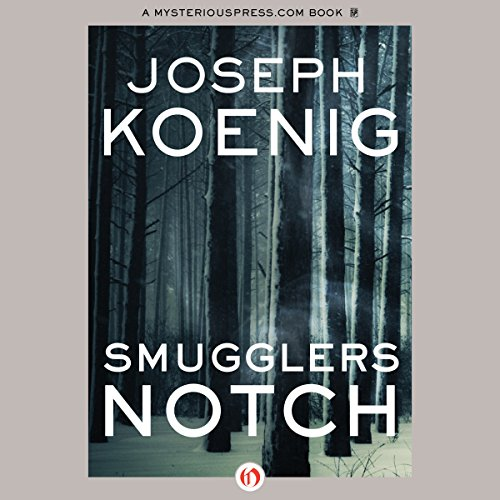 Smugglers Notch audiobook cover art