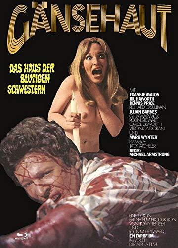 Gänsehaut - Das Haus der blutigen Schwestern - Gänsehaut - The Haunted House of Horror - Mediabook - Cover B - Limited Edition auf 222 Exemplare - X-Rated-Eurocult-Collection #64 (+ DVD) [Blu-ray]