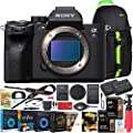 Sony a7s III ILCE-7SM3/B Mirrorless Digital Camera with 35mm Full-Frame Sensor Body Bundle w/Deco Gear Backpack + Extra Battery + Dual Charger + 2X 64GB Memory Card (128GB Total) and Kit Accessories by Sony