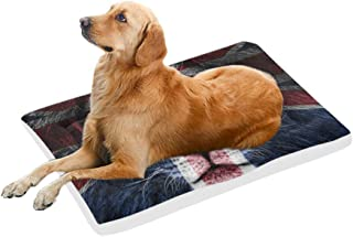 InterestPrint Vintage Lion with Butterfly and Flowers Reusable Dog Bed Mat Soft Washable Pet Pad Bed for Dogs & Cats, 42x26 Inch