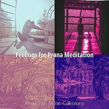 Feelings for Prana Meditation