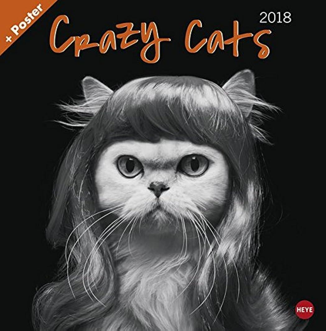 ペグ失われたお互いCrazy Cats Broschurkalender 2018