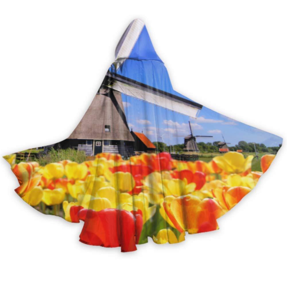 Yushg Tulipanes con Molinos de Viento holandeses Capas y Capas de ...