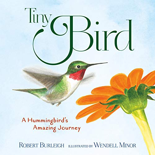 Tiny Bird: A Hummingbird's Amazing Journey (English Edition)