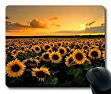 Mouse Pad with Sunflower Field Non-Slip Neoprene Rubber desktop/computer mouse mat. Size: 9 Inch(220mm) X 7 Inch(180mm) X 1/8(3mm)