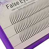Scala 8-16mm to choose Handmade Grafted Individual False Eyelashes Natural Long Eye Lashes Cluster Extension 3D Fans Fake Eyelashes(11mm)