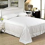 100% Mulberry Silk Comforter/Duvet/Quilt, Warm for Winter, Twin 66×84inch,...