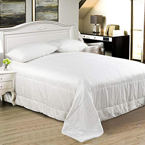 Since Silk Silk Comforter/Duvet/Quilt, Warm for Winter, Twin 66×84inch,...