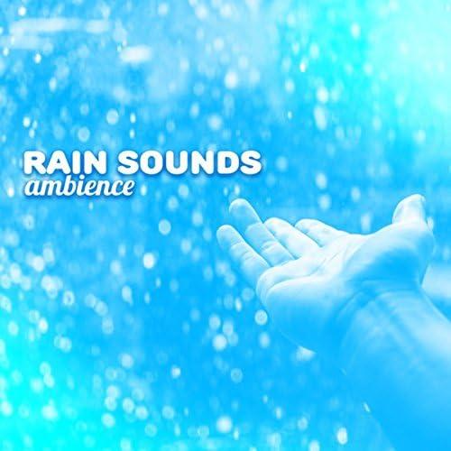Rain Sounds Ambience