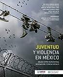 Juventud y violencia en México: Diálogo entre neurociencias, sociedad civil y ciencias sociales