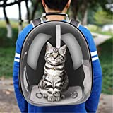 RCruning-EU Mochila Respirable portátil del Viaje del Animal doméstico,Bolsa Transporte para Perros Gatos