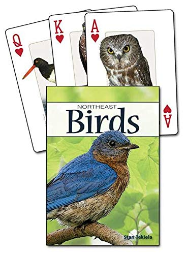 Image OfBirds Of The Northeast Playing Cards (Nature's Wild Cards)
