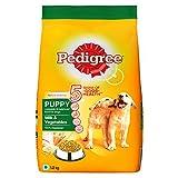 Pedigree Puppy Dry Dog Food, Milk & Vegetables, 1.2kg Pack