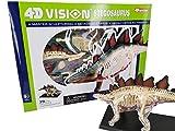 4D VISION 動物解剖モデル 立体パズル 【 STEGOSAURUS 恐竜 ステゴザウルス解剖モデル……