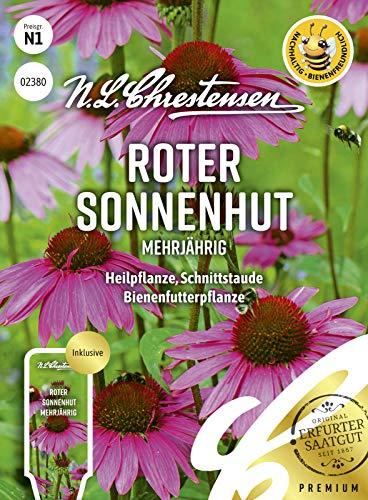 Roter Sonnenhut Mehrjährig, Heilpflanze, Schnittstaude, bienenfreundlich, Samen