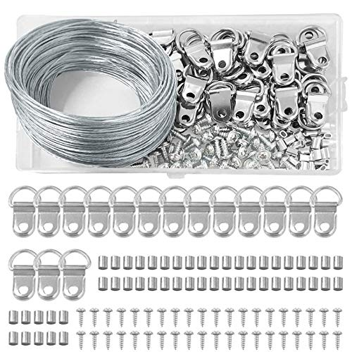 HO2NLE Aufhänger für Bilder 30m Stahlseil 40 Stück D-Ring Bildaufhänger mit Schrauben und 40 Stück Aluminium Crimpschlaufe Bilderrahmen Aufhänger Set