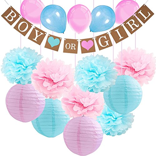 Gender Reveal Party Supplies-Boy or Girl Banner Pink Blue Tissue Paper Pom Pom Flowers Paper Lanterns with Balloons for Pregnancy Announcement Party/Baby Shower/Gender Reveal Decorations