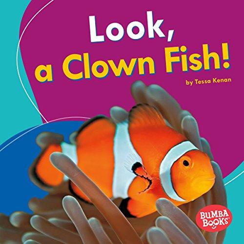 Look, a Clown Fish! copertina
