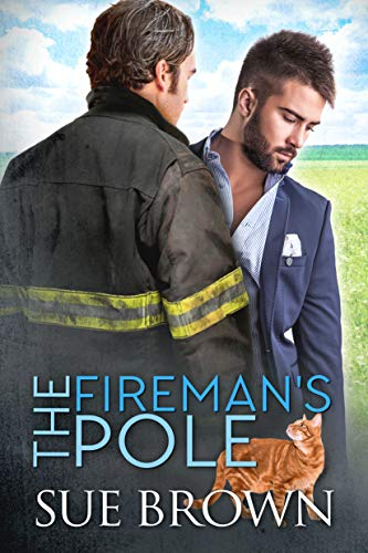 The Fireman's Pole: a small town/opposites attract/gay romance story