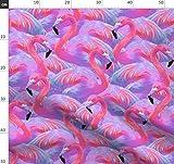 Flamingo, Flamingos, Tropisch, Lila, Rosa, Pink, Insel
