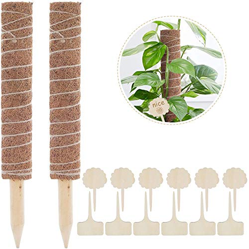 InFreesh 2 Stück 40CM Moosstab Rankhilfe Pflanzstab, Rankhilfen für Kletterpflanzen mit 12 Pflanzenetiketten, Rankstab Rankhilfe Blumenstab für Zimmerpflanzen, Pflanzenpfosten, Blumenständer