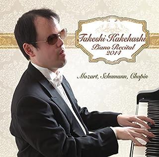 梯剛之ピアノ・リサイタル2014