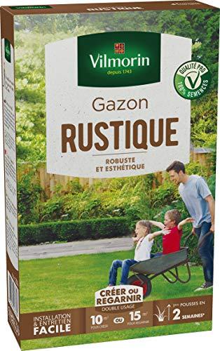 Vilmorin Gazon Rustique Boite 250 g, Vert
