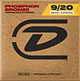 Jim Dunlop DJP0920 Jeu de 5 cordes Banjo Bronze Phosphor