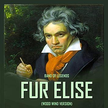 Für Elise (Wood Wind Version)