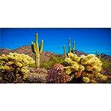 AWERT Fondo de terrario de 120 x 46 cm, azul cielo desierto oasis cactus reptil hábitat fondo de vinilo duradero (no adhesivo)