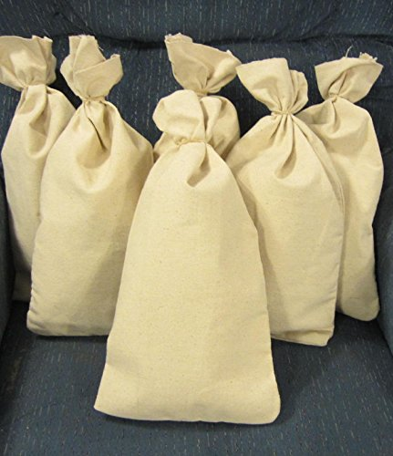 6 Canvas Bank Coin Money Sacks Bag 9″ By 17.5″ Deposit Change Bags Transit
