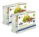 NATURE ESSENTIAL   Chitosán + Garcinia 800 mg 60 Cápsulas con Vitaminas B-1, B-2, B-6 y B-12. (Pack 2 unid.)