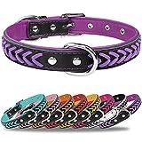 TagMe Collar de Cuero para Perro, Collares de Cuero Ajustables y Duraderos con Anillo en D para Perros Grandes, Púrpura