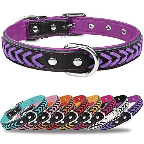 TagMe Collar de Cuero para Perro, Collares de Cuero Ajustables y Duraderos con Anillo en D para Perros Pequeños, Púrpura