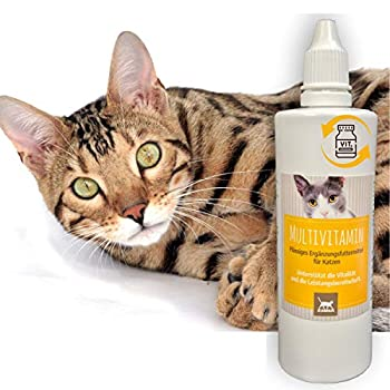 Emma ® Complexe Multi Vitamine B pour Chats, vitamines B1, B2, B6, B12, Calcium, Acide folique, Fer, Zinc Liquid 100 ML