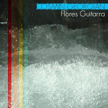 Flores Guitarra