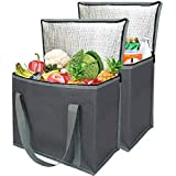 2 Insulated Reusable Grocery Shopping Bags, Xl, Large Picnic Cooler Bag Zipper Zippered Top Cold, Grey