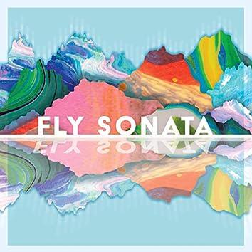 Fly Sonata