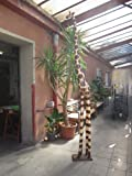 3 Meter Lebensgroße Giraffe Holzgiraffe Holz Fair Trade Giraffen