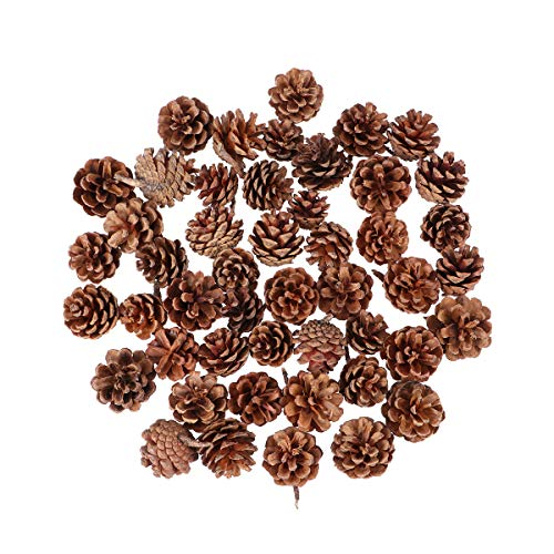 OULII Conos de pino secado Natural 48pcs Navidad colgante adorno colgantes adornos navideños...