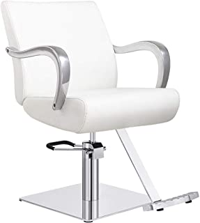 Salon Styling Chair Hydraulic Hair Stylist Chair Meteor - White