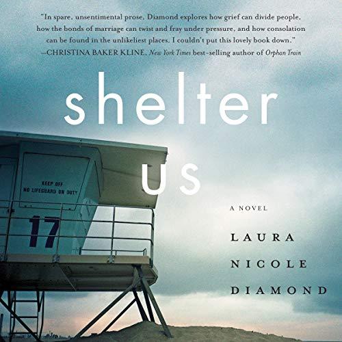 Shelter Us cover art
