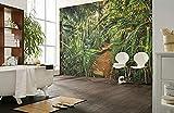 'Komar 8–989Papel pintado fotográfico de papel'Jungle Trail, tamaño: 368X 254cm (ancho x altura), 8piezas, incluye de cola, fabricado en Alemania, multicolor