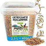 Gusanos de harina secados, 2,5 litros (400 g), alimento en cubo, el snack rico en proteínas para aves silvestres, peces, reptiles, tortugas y erizos.
